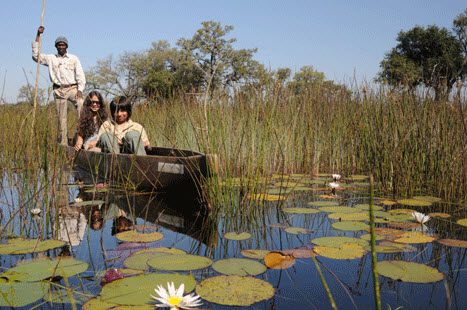 Sasha and Tristan glide through lilypads and rushes