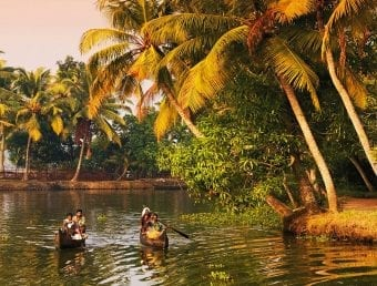 The Kerala Bakcwaters