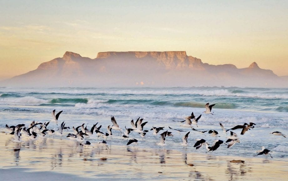 The Cape Town