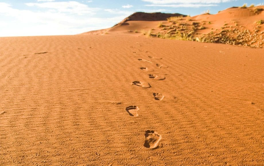Footsteps on the desert sand in Sossusvlei Namib Desert