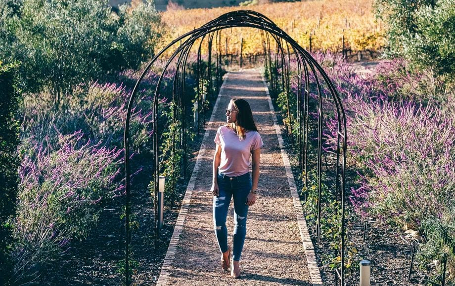 Woman taking a walk in the cape winelands park