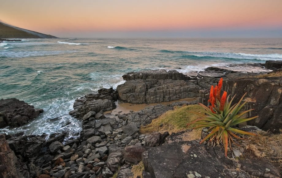 Hole in the Wall – an icon of the Eastern Cape